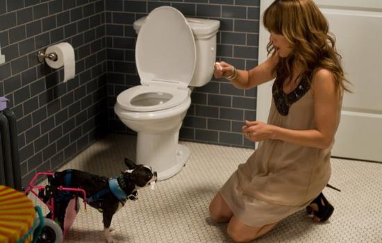 Главная героиня (Дженифер Лопес) и её собачка